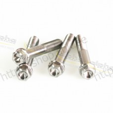 alpha Racing screw kit front caliper titanium