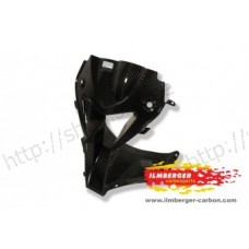 Air Intake (Front Fairing centre piece) Carbon