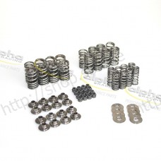 alpha Racing valve spring kit V1