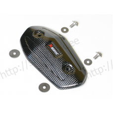 Akrapovic Heat shield (Carbon) P-HSK10R4